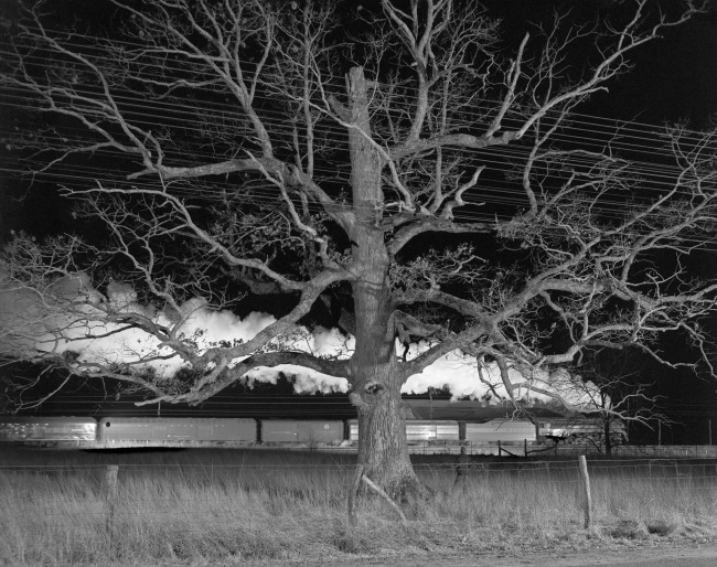 "O. Winston Link (American, 1914-2001) '""Giant Oak,"" Max Meadows, Va., Dec. 30, 1957'"