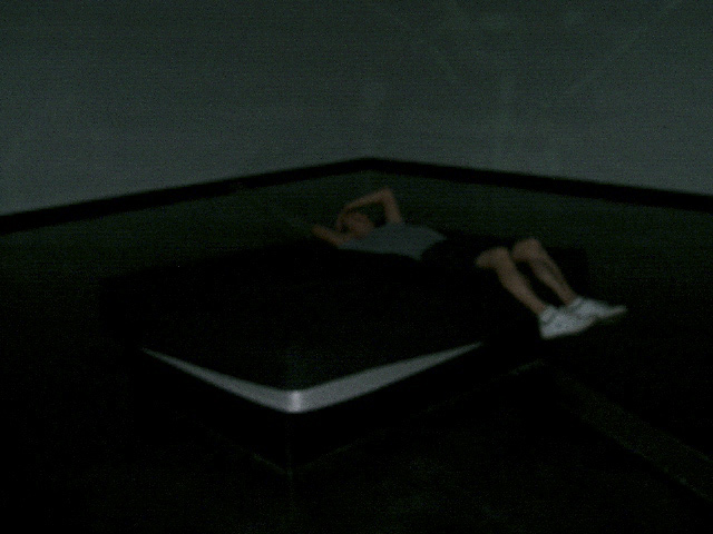 Gerda Steiner and Jorg Lenzlinger. Installation view of waterbed at 'The Waterhole' exhibition at ACCA, 2009