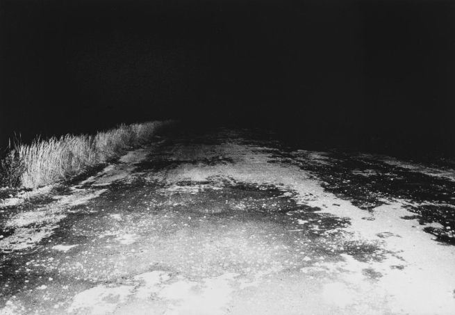 Daidō Moriyama (Japanese, born 1938) 'Untitled' c. 1981-1985