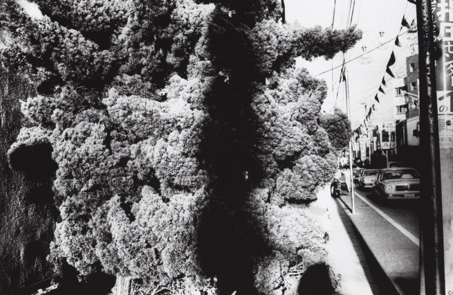Daidō Moriyama (Japanese, born 1938) 'Untitled' from the series 'Light and Shadow' 1982