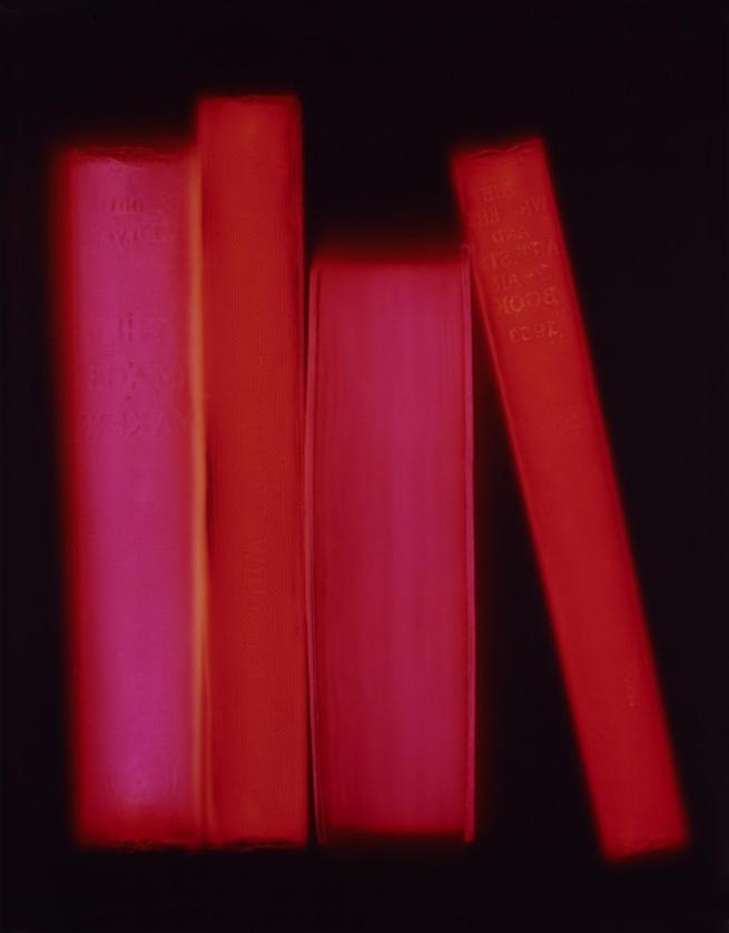 Penelope Davis. 'Shelf' 2008