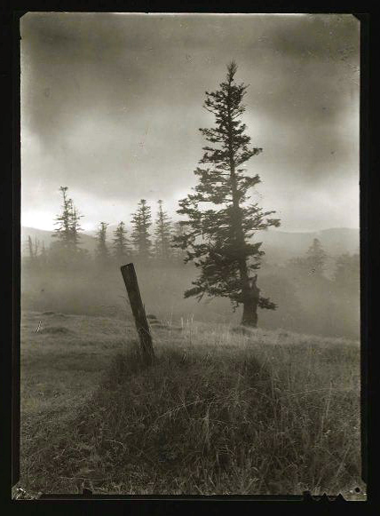 Josef Sudek. From the series 'Vanished Statues in Mionsi' 1969