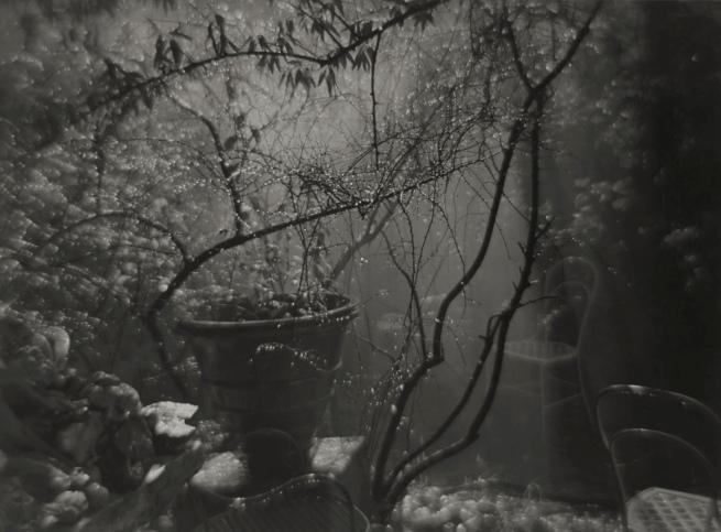 Josef Sudek. 'A Summer Shower in the Magic Garden' 1954-59