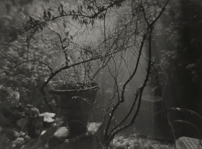 Josef Sudek. 'A Summer Shower in the Magic Garden' 1954-59
