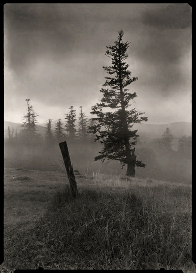 Josef Sudek(1896-1976) From the series 'Vanished Statues in Mionsi' 1969
