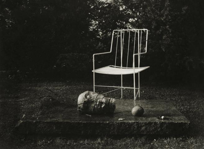 Josef Sudek(1896-1976) 'In the enchanted garden' 1954 - 59