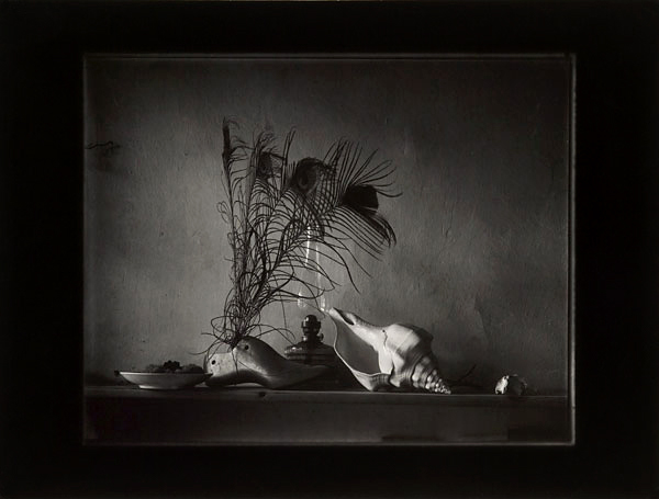 Josef Sudek. 'Still-life after Caravaggio, Variation No 2 (or a night-time Variation)' 1956