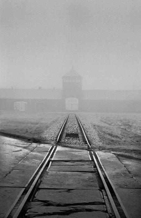 Jeff Gusky. 'Birkenau Silhouette' Auschwitz, Poland 1996