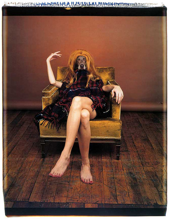 William Wegman. 'On Set' 1994