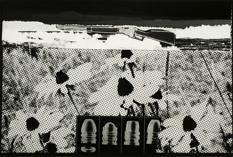 John Wood. 'Rifle Bullets and Daises' 1967