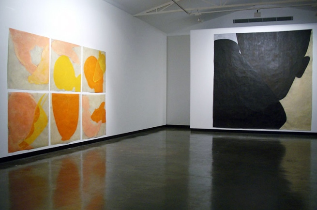 Judith Wright. Installation of 'Desire' exhibition at Sophie Gannon Gallery, Melbourne