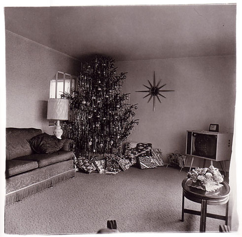 Diane Arbus. 'Xmas tree in a living room in Levittown, L.I.,' 1963