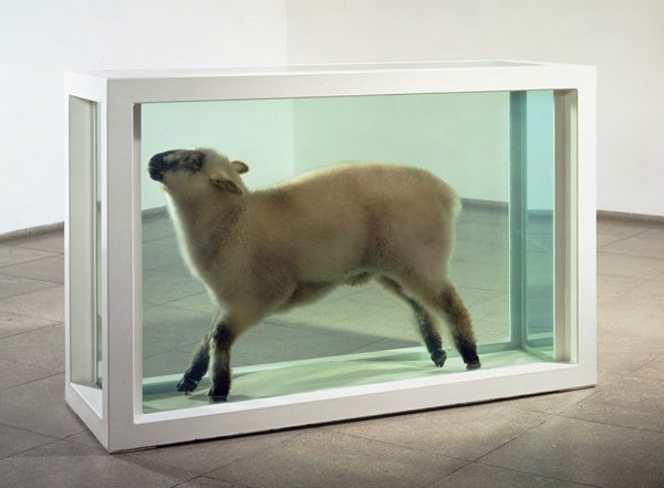 Damien Hirst. 'Away from the flock' 1995