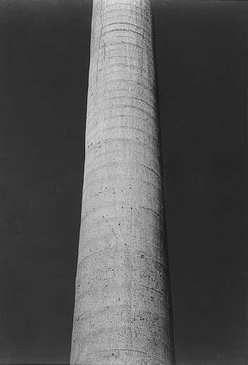 Edward Weston. 'Palma Cuernavaca' 1925
