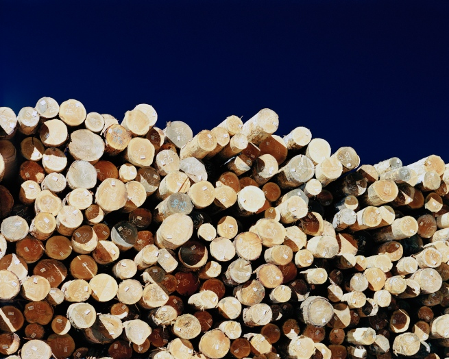 Eirik Johnson (American, b. 1974) 'Stacked logs in Weyerhaeuser sort yard, Cosmopolis, Washington' 2006-2008