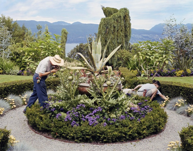 Scott McFarland. 'Inspecting, Allan O'connor Searches for Botrytis cinerea' 2003