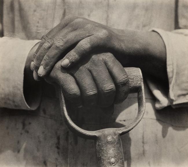 Tina Modotti(American (born in Italy, died in Mexico), 1896-1942) 'Manos de trabajador, Mexico' (Worker's Hands, Mexico) 1927