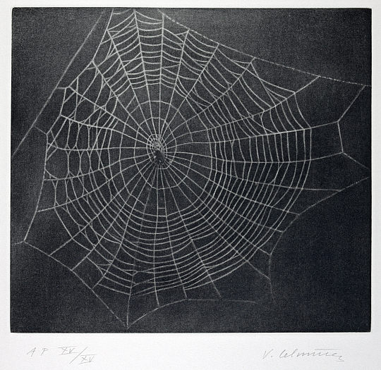 Vija Celmins. 'Untitled (Web 1)' 2001
