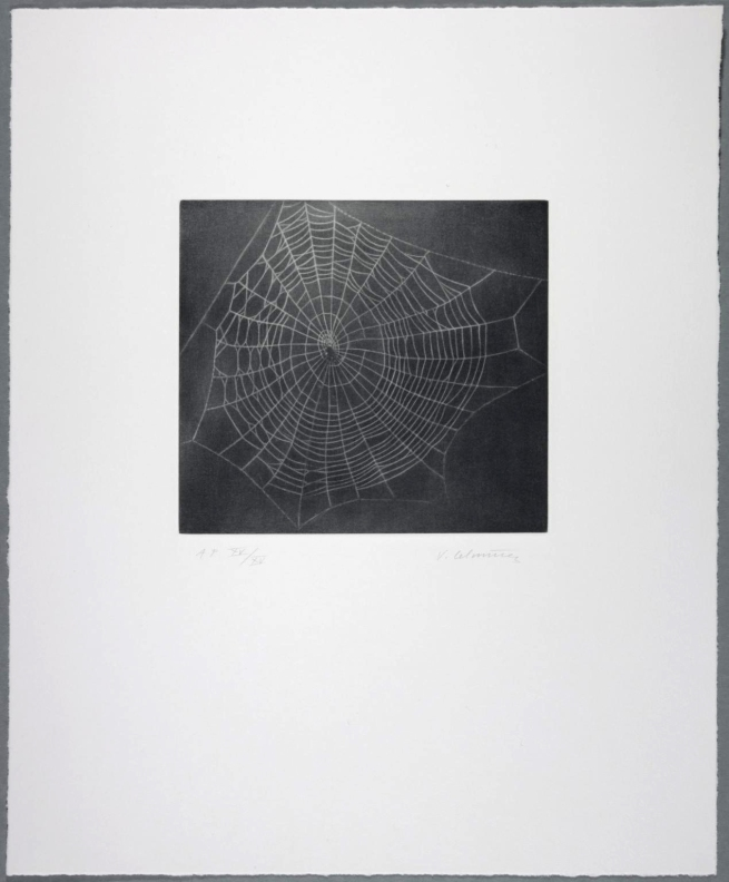 Vija Celmins. 'Untitled (Web 1)' 2001