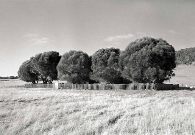 Ricky Maynard. 'The Healing Garden, Wybalenna, Flinders Island, Tasmania' from the series 'Portrait of a Distant Land' 2005