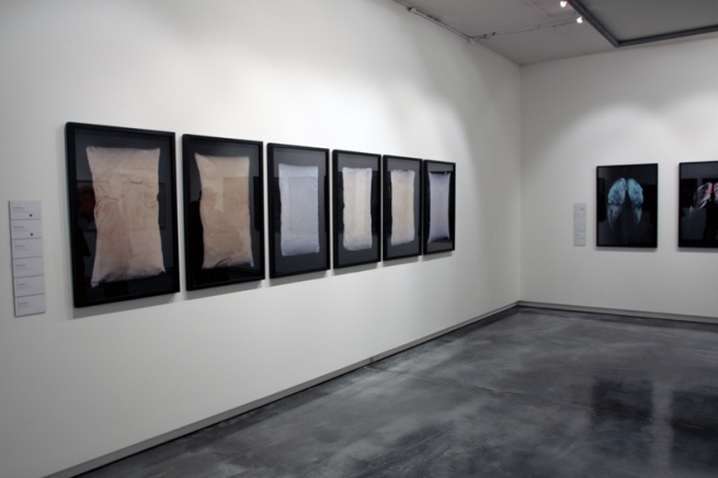 Installation view of 'Little Treasures' showing the work of Toby Richardson 'Portrait of the Artist' series at Helen Gory Galerie, Melbourne