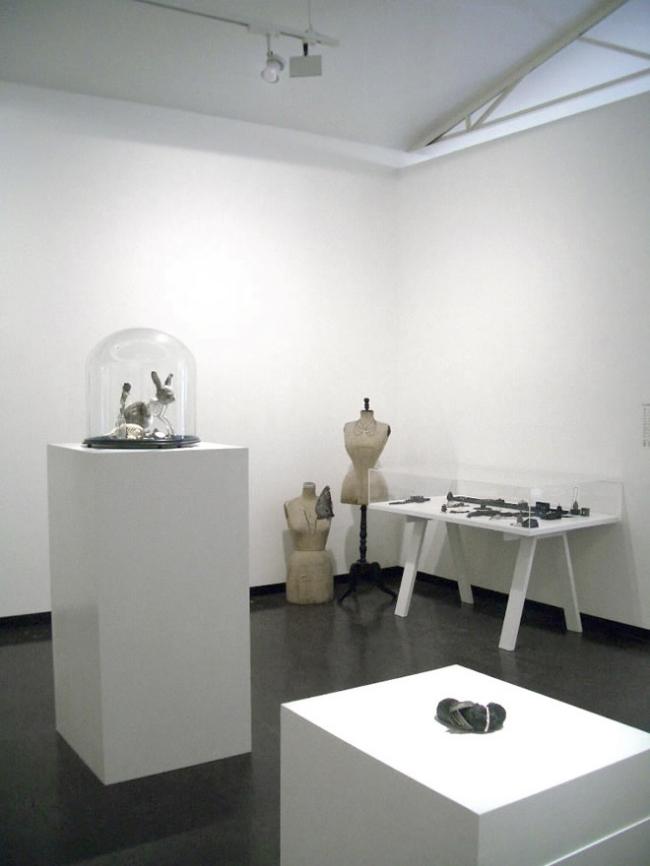 Julia de Ville 'Cineraria' installation view at Sophie Gannon Gallery, Melbourne