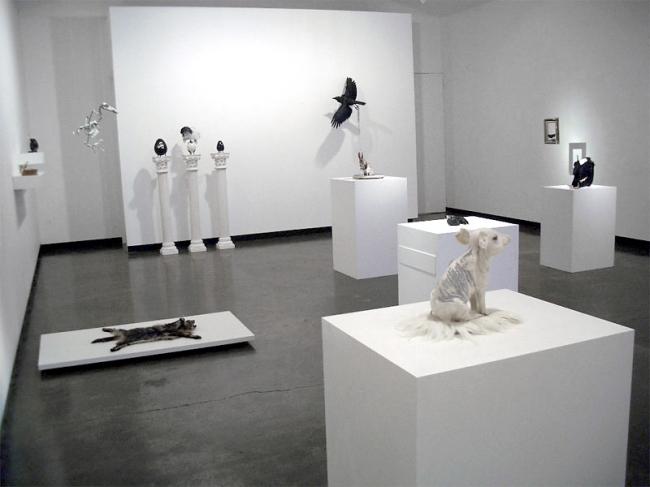 Julia de Ville 'Cineraria' installation views at Sophie Gannon Gallery, Melbourne