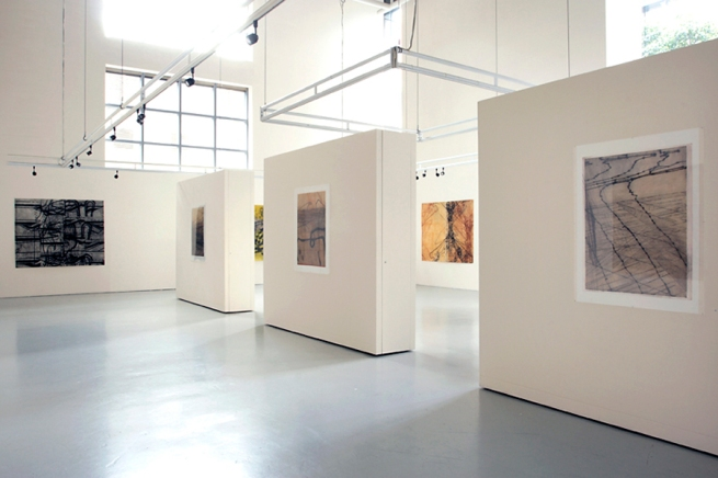 Installation view of 'Intersections' by Sarah Amos at Gallery 101, Melbourne