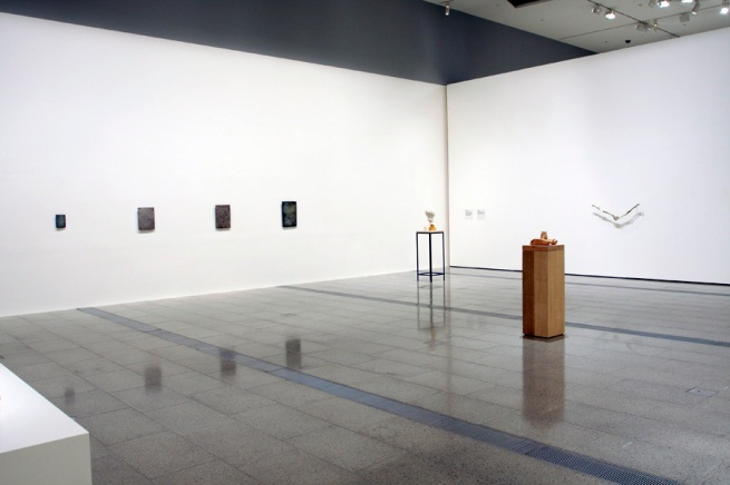 Installation view of 'Ricky Swallow: The Bricoleur' second room at NGV Australia