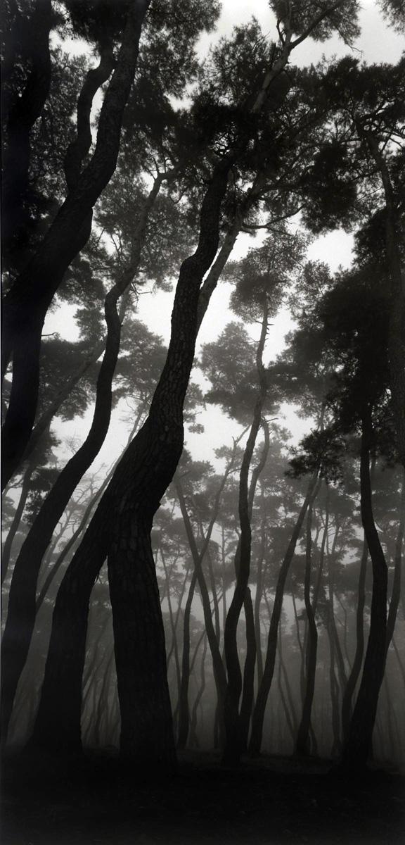 Bien-U Bae. 'Kyung ju' from the series 'Sonamu' 1985