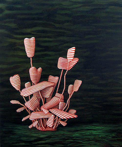 Vera Moller. 'Rubella' 2008-09