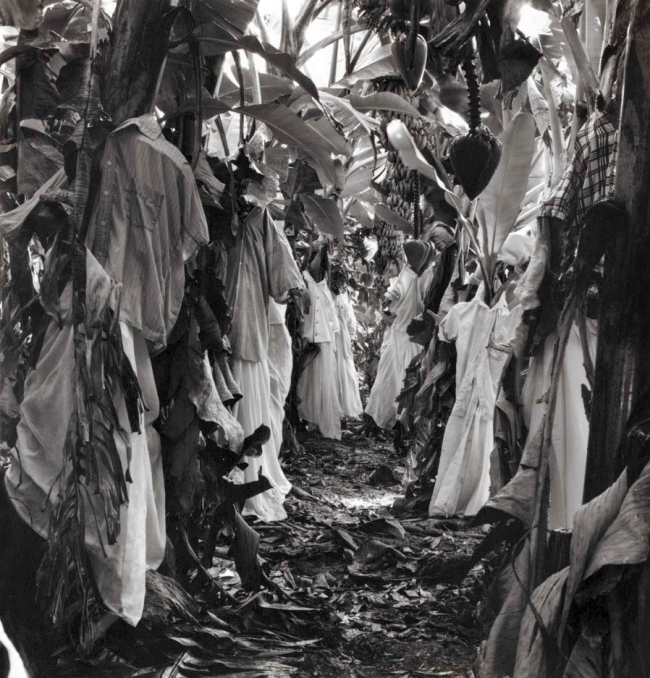 Simryn Gill(Australian, born Singapore 1959) 'Untitled' 1995