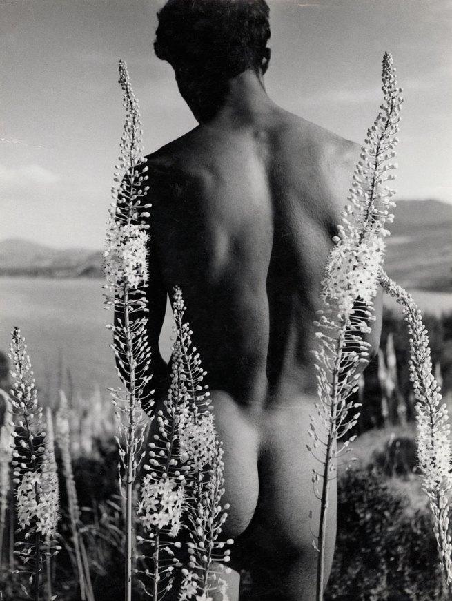 Herbert List(German, 1903-1975) 'Arab Boy with Desert Candles' 1935
