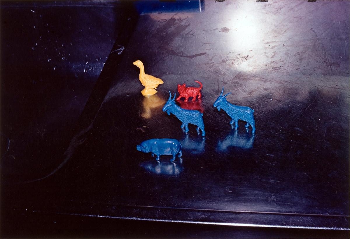 william eggleston photography. William Eggleston