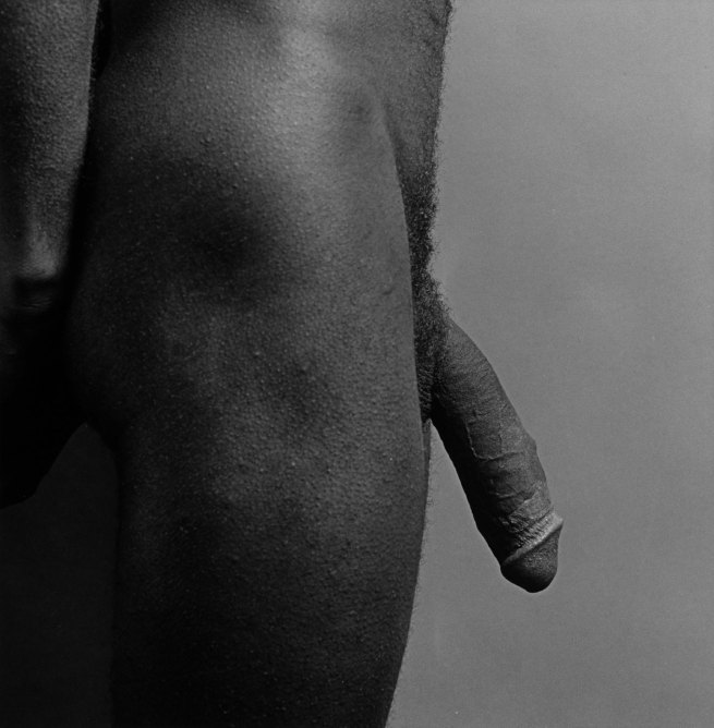 Robert Mapplethorpe. 'Greg Cauley-Cock' 1980 © Robert Mapplethorpe Foundation. Used by permission