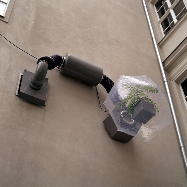 Ingo Vetter. 'Adaptation Laboratory' 2004