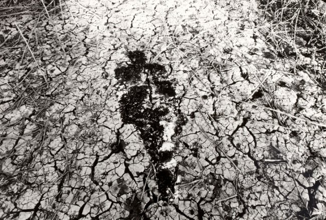 Ana Mendieta. 'Untitled (Silueta Series)' 1978
