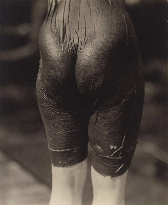 Alfred Stieglitz. 'Ellen Koeniger' 1916