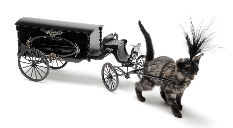 http://artblart.files.wordpress.com/2010/08/deville-kitten_hearse-xlg.jpg