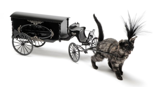 Julia deVille. 'Kitten drawn hearse' 2010