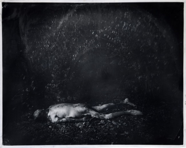 Sally Mann. 'Untitled WR Pa 59' 2001