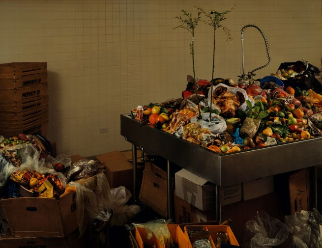 Taryn Simon. 'U.S. Customs and Border Protection, Contraband Room, John F. Kendedy International Airport, Queens, New York' 2005/2007