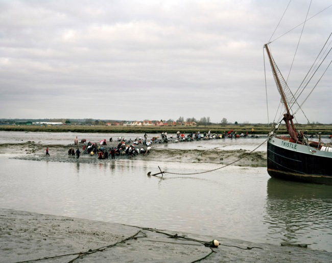 Simon Roberts. 'Mad Maldon Mud Race, River Blackwater, Maldon, Essex, 30th December 2007' from the series 'We English'