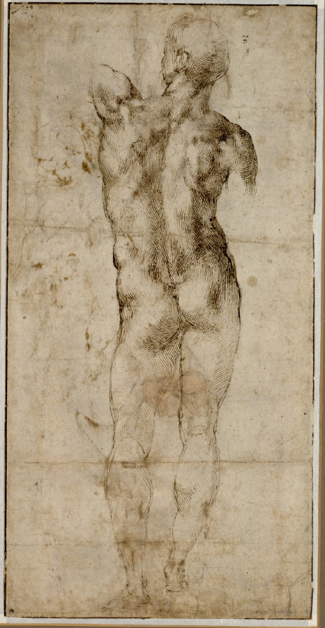 Michelangelo Buonarroti. 'Standing Male Nude Seen From Behind' 1501-04