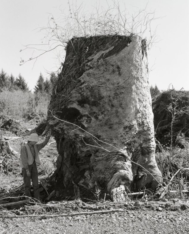 Robert Adams. 'Kerstin, Next to an Old-Growth Stump, Coos County, Oregon' 1999-2003