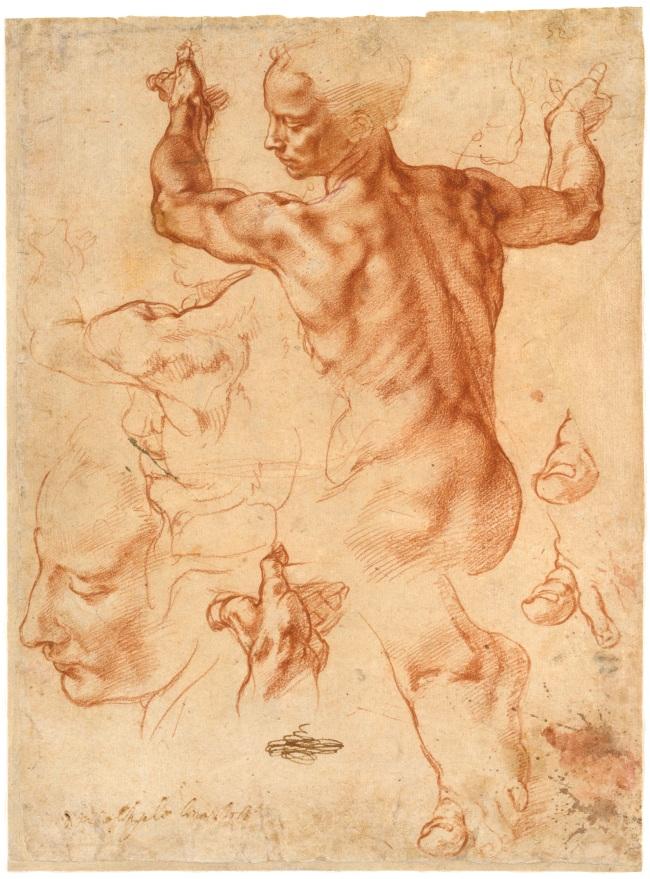 Michelangelo Buonarroti. 'Studies for the Libyan Sibyl' (recto) 1511-12
