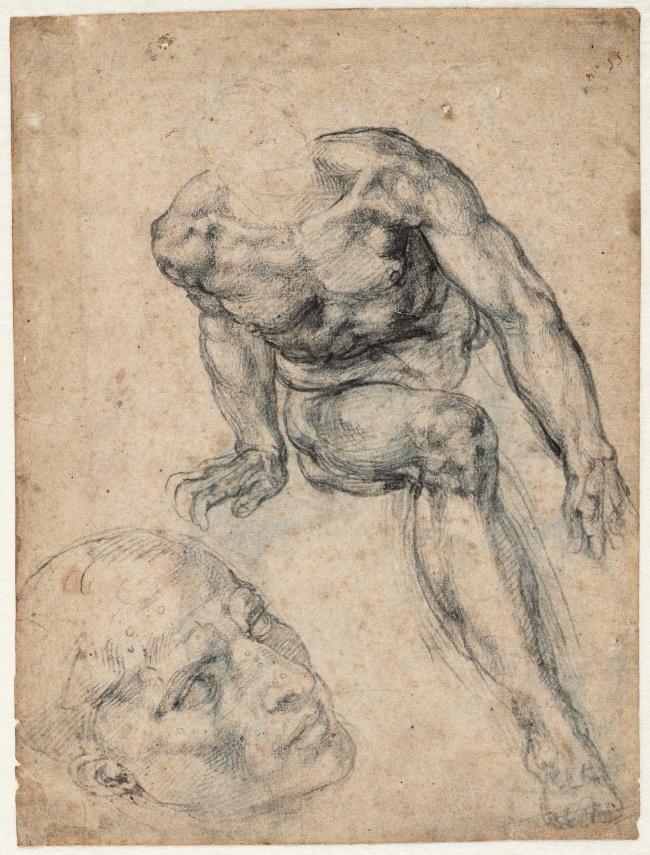 Michelangelo Buonarroti. 'Study of a Male Nude, Separate Study of his Head' (recto) 1534-1536