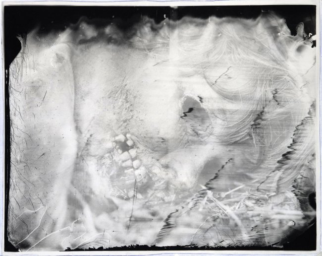 Sally Mann. 'Untitled' 2000-1