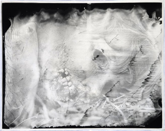 Sally Mann. 'Untitled' 2000-1