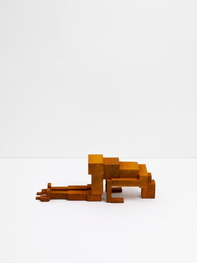 Antony Gormley. 'MEME CXXIX' 2011
